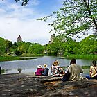 Quiet moment in Central Park, Manhattan, New York by Zal Lazkowicz