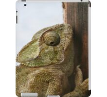 Close Up Of A Wild Green Chameleon iPad Case/Skin