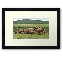On the March!! Framed Print