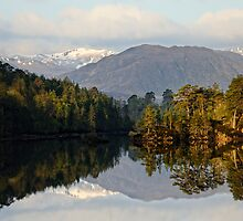 Glen Affric Reflections by Thomas Peter