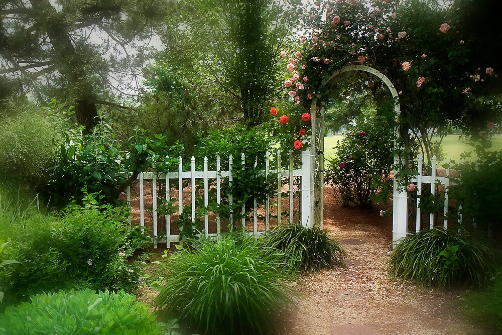 Dreamy Garden by Trudy Wilkerson