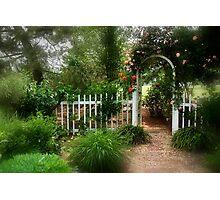 Dreamy Garden Photographic Print