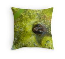 Frog Stew Throw Pillow