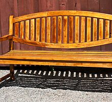 Garden Bench by Nickolay Stanev