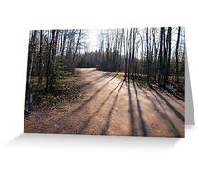 first light of day Greeting Card
