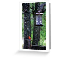 Red Fancy Greeting Card