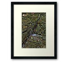 Pearl Ravine #1 Framed Print