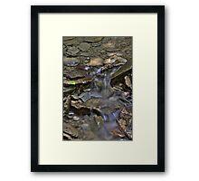 Pearl Ravine #3 Framed Print