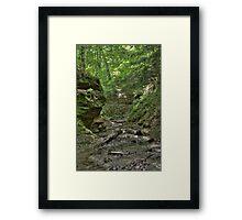 Trail #2 - Ravine Framed Print