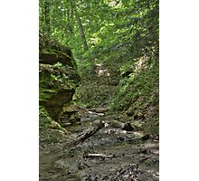Trail #2 - Ravine Photographic Print