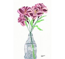 alstroemeria in glass bottle.  Photographic Print