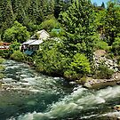 Downieville by Barbara  Brown