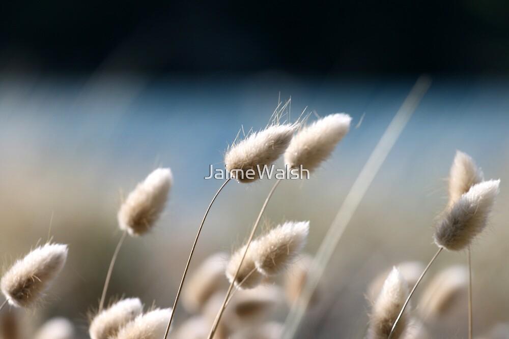 Bunny Tails by JaimeWalsh