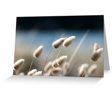 Bunny Tails Greeting Card