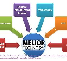 India Based Web Development Company by Meliortechsys