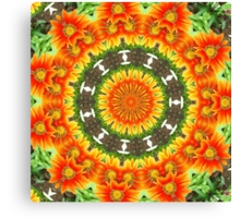 Kaleidoscopic Orange Garden Gazanias Canvas Print