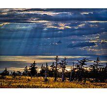 Skyline Trail Evening Photographic Print