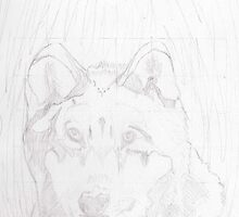 Wolf in Grass by Chelsea Allen