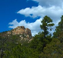 The Beauty of Mt. Lemmon by Timothy  Ruf