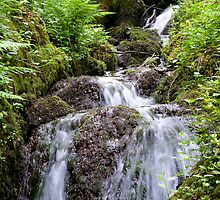 Canonteign Falls 2 by bubblebat