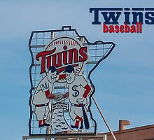 Twins Baseball by don thomas