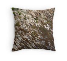 Light on Grass Throw Pillow