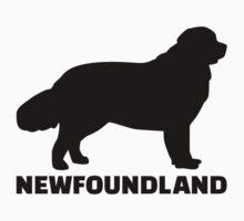 Newfoundland by Designzz