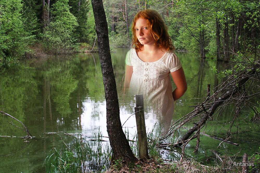 Lake fairy by Antanas