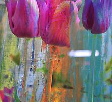 Hidden Tulips by ARTforcancer