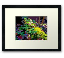 Fern Vector Framed Print