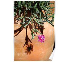 Pot plant. Poster