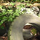 Tyred waste by Paul Morley