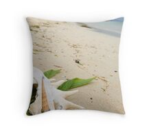 Pacific rings  Throw Pillow