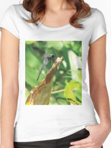 Beautiful Dragonfly Women's Fitted Scoop T-Shirt