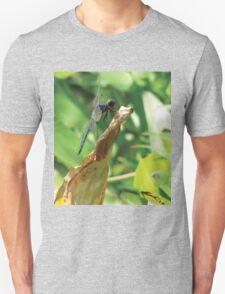 Beautiful Dragonfly T-Shirt