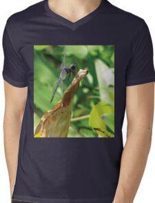 Beautiful Dragonfly Mens V-Neck T-Shirt