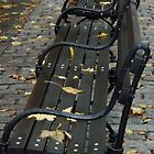 bench by DarylE