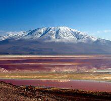 Laguna Colorada, Bolivia by Tamara Travers