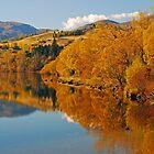 Autumnal Lake Hayes by Wayne England
