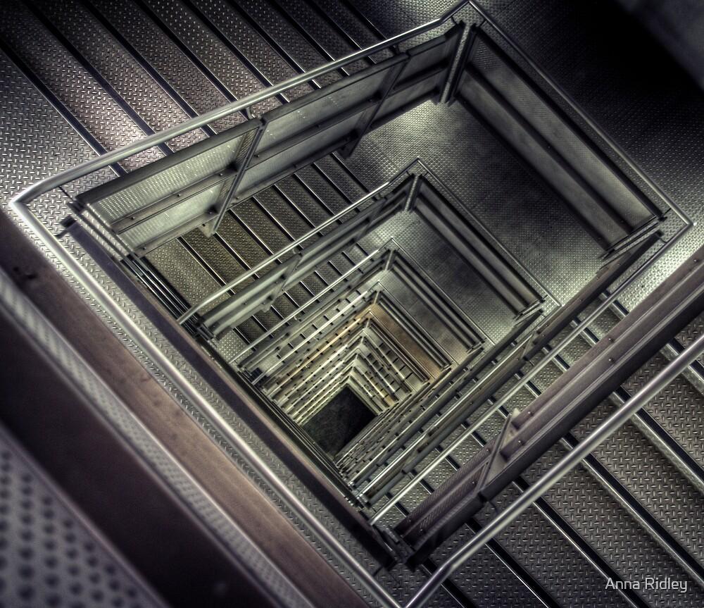 Vertigo by Anna Ridley