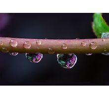 The rain Photographic Print