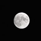 White Full Moon by VanillaDolphin