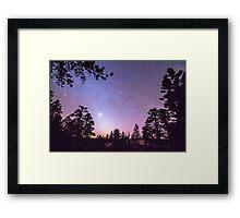 Forest Night Star Delight Framed Print
