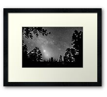 Forest Silhouettes Constellation Astronomy Gazing Framed Print