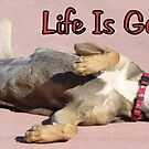 Life Is Good... by Susan Bergstrom