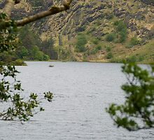 Gougane Barra Lake 2 by Georgia Conroy