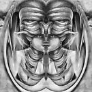 Polarized Mirrored Drawing 1a. by nawroski .
