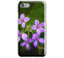 Erodium Cicutarium flowers iPhone Case/Skin