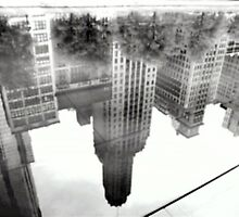 REFLECTIONS  UPSIDE DOWN by Scott  d'Almeida