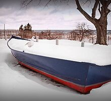 Docked in Winter by Patricia Montgomery